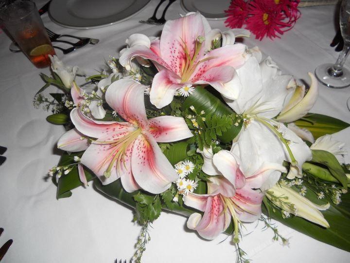 Tmx 1456073557354 Facebook 20160221 105248 Antioch wedding travel