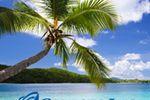 Cruises Inc. image