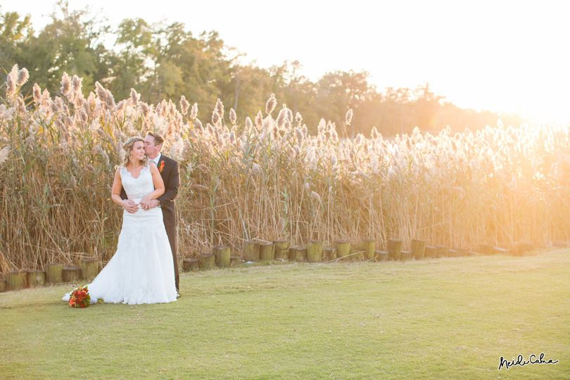 Newlyweds by the field