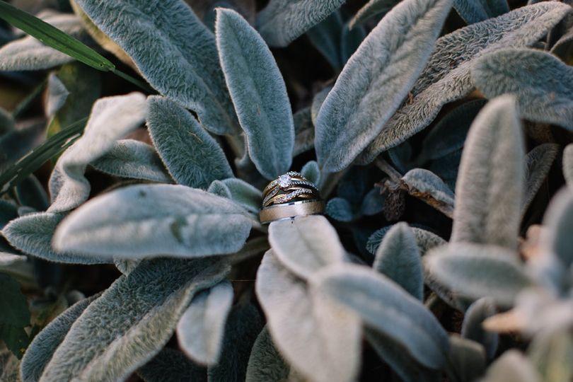 Rings - Katie Ulrich Photo