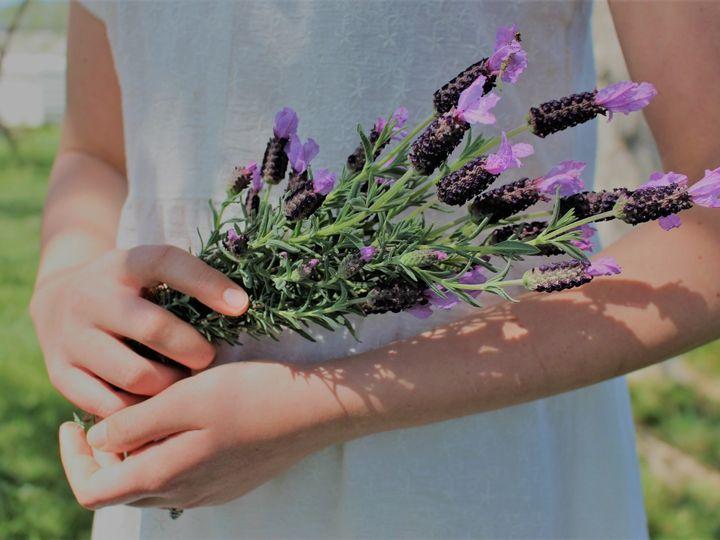 Tmx Lavender 2 Filter 51 1898243 158682116979903 Linden, CA wedding planner