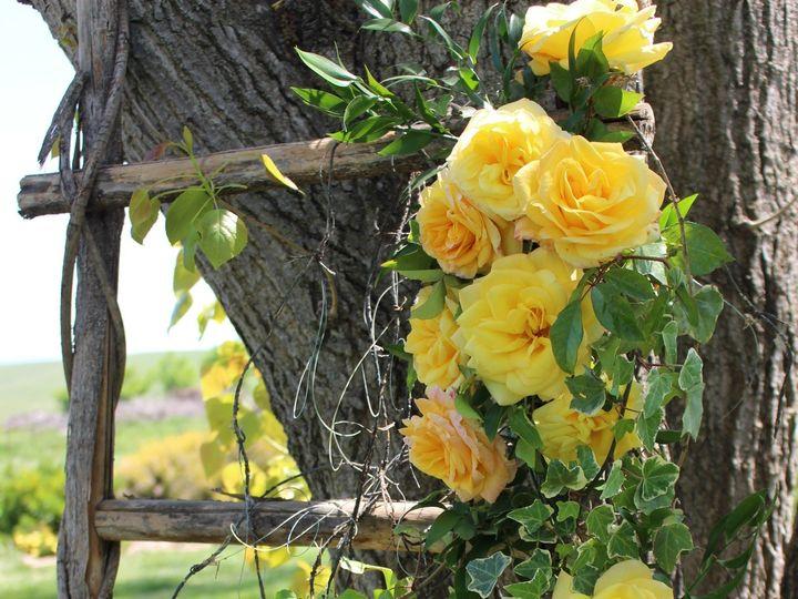 Tmx Yellow 3 51 1898243 158682091948645 Linden, CA wedding planner
