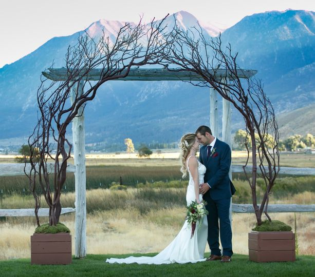 Grand Rustic Arch (10ft x 10ft) Go big and beautiful with this one of kind Arch.