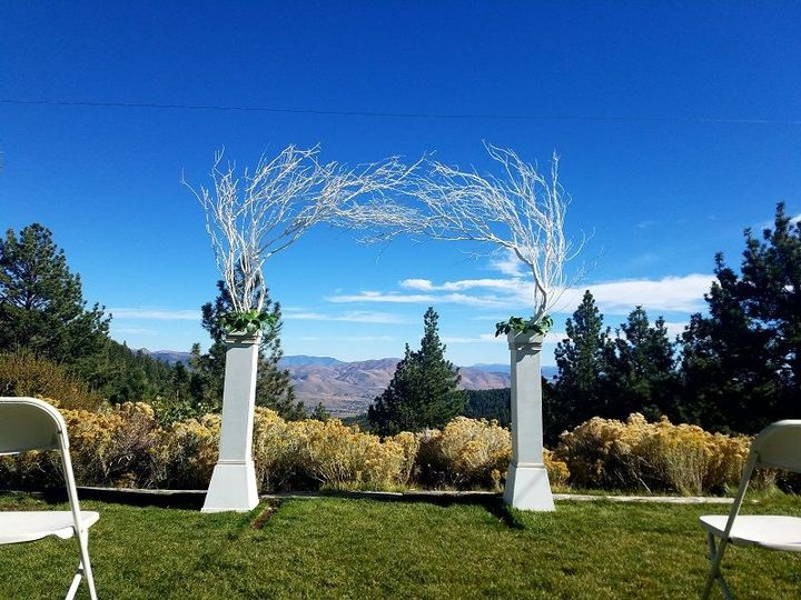 White Column Arch ( 8ft x8ft) White manzanita on stately columns.