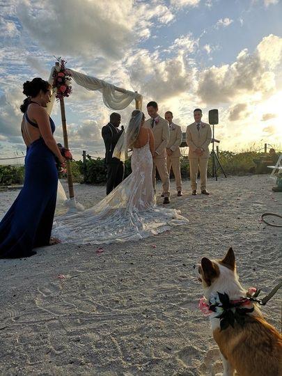 Amazing Florida Wedding