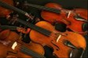 The Vail Valley String Quartet & Trio LLC
