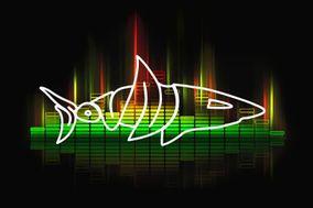Sound Shark Entertainment