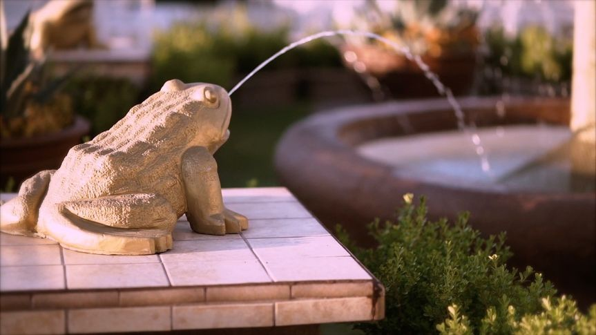 800x800 1486067408422 frog fountain