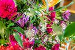 Royal Blossoms image