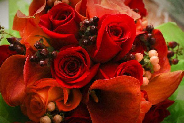 Tmx 1421961667211 Untitled 25 Of 60 Billerica wedding videography
