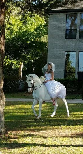 A Fairy-tale Bride