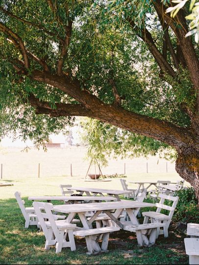Willow tree seating