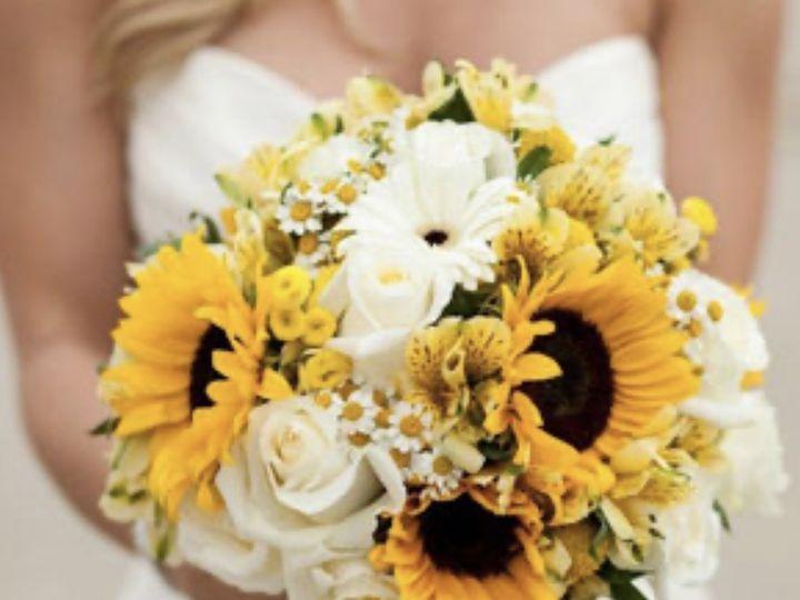 Tmx Img 0970 51 1972843 159821169619927 Vero Beach, FL wedding florist