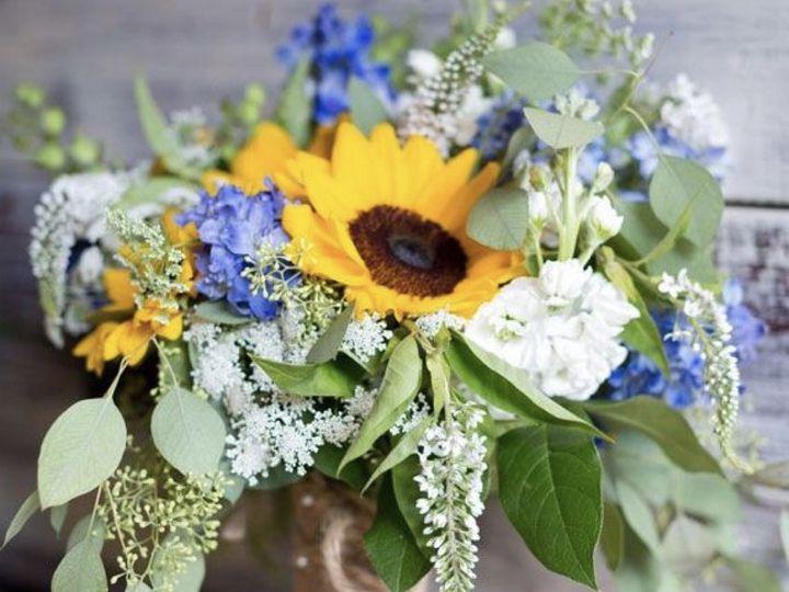 Tmx Img 0972 51 1972843 159821171259521 Vero Beach, FL wedding florist