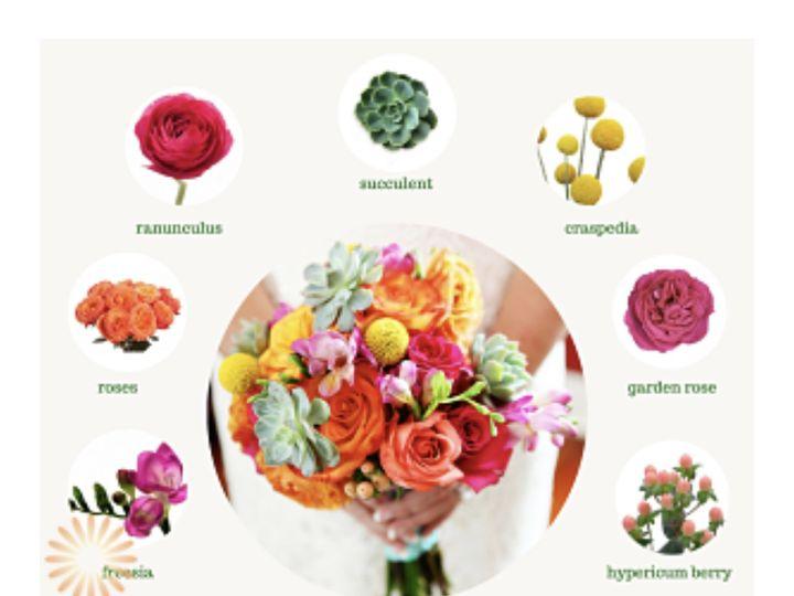 Tmx Img 1095 51 1972843 159821236460868 Vero Beach, FL wedding florist