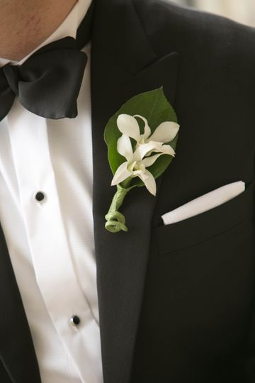 Classic Tuxedo Close-Up