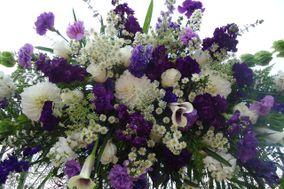 Alma Blooms Florist