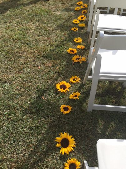 sunflowers lining the aisle for the ceremony
