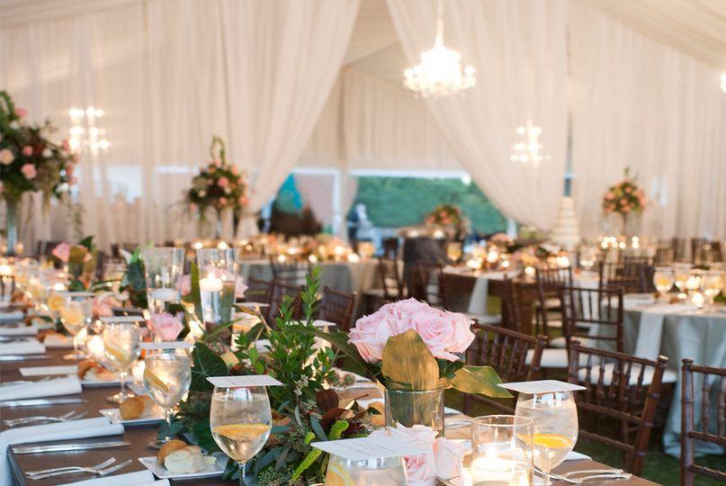 Unlimited party event rental event rentals hiram ga weddingwire 800x800 1484172076353 pricing background junglespirit Choice Image