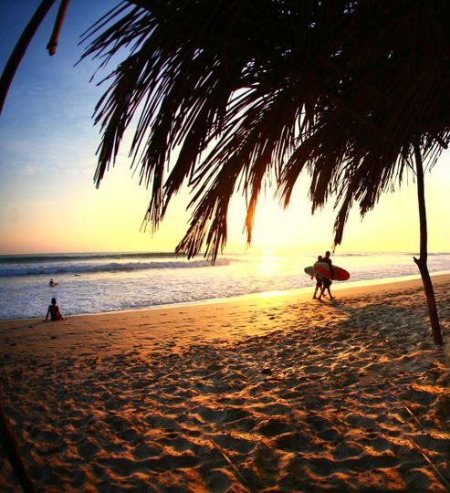 Costa Rica makes for a great honeymoon destination- whether you like surfing, hiking or just...