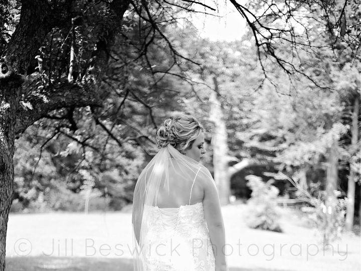 Tmx 116117897 3585242608161286 7791862321184690081 O 51 1987943 160071662858432 Morrison, IL wedding photography