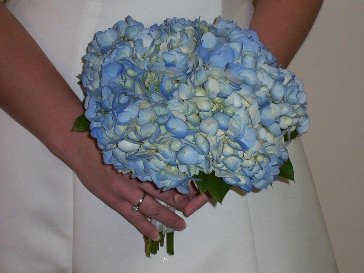 Tmx 1510954806415 Blue Hydrangea Columbus wedding florist