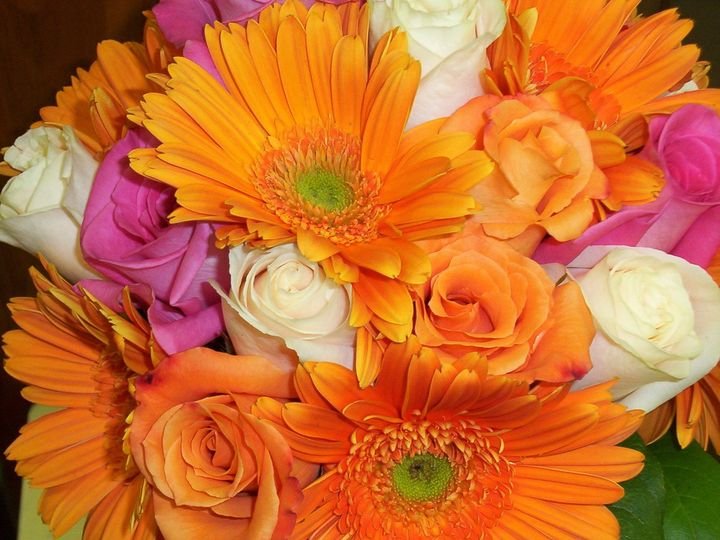 Tmx 1510954868888 Close Up Orange Gerb Columbus wedding florist