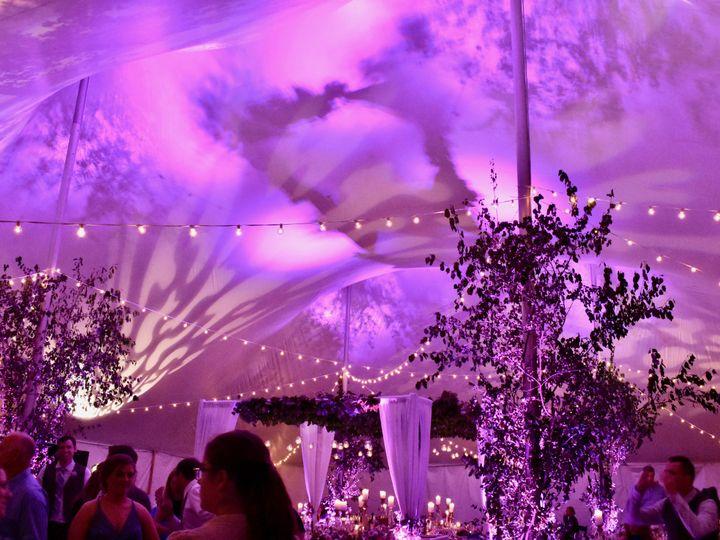 Tmx Tentbulbspurple 51 1015053 Milwaukee, WI wedding dj