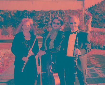 Tmx 1257691561223 Vv94 Fairfax wedding ceremonymusic