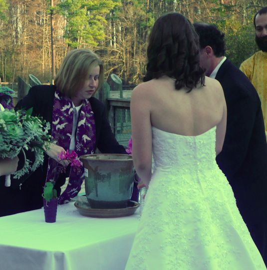 Tree Planting Ceremony of Rare American Chestnut! Virginia Living Museum Newport News, VA  ** Note:...