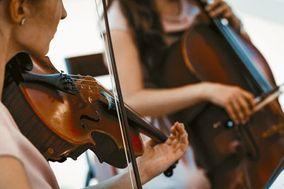 Ovation Strings