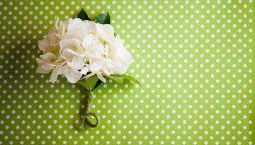 Tmx 1213911666898 IMG 7252copy Earlville wedding florist