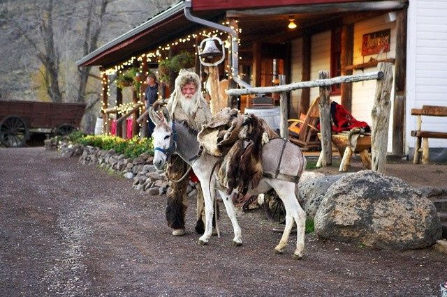 Tmx Mountain Man W Pack Burro 51 444153 1572632382 Wolcott, CO wedding venue