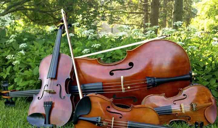 The Delmonico String Quartet