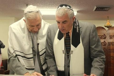 rabbisteve