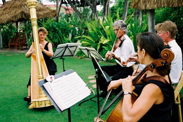 Quartet of Harp, Violin, Viola, and Cello provide Ceremony and Cocktails Music, Four Seasons Resort...