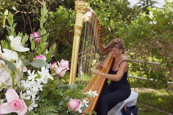 Beautiful Outdoor Wedding on Maui, Hawaii