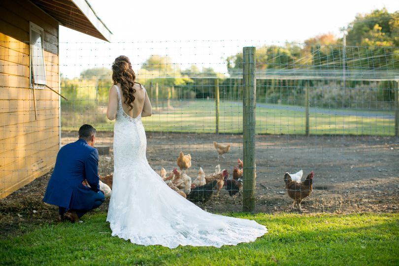 Newlyweds feeding the chickens