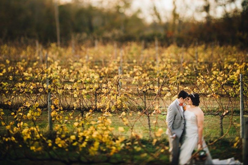 Newlyweds kissing in the field