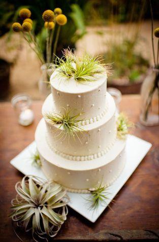 Tmx 1526203564 E0312b013b4f25be 1526203563 Db52669849b93763 1526203558716 6 A6 Big Sur, CA wedding cake