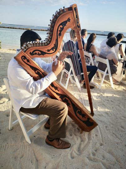 Harpist at beach ceremony