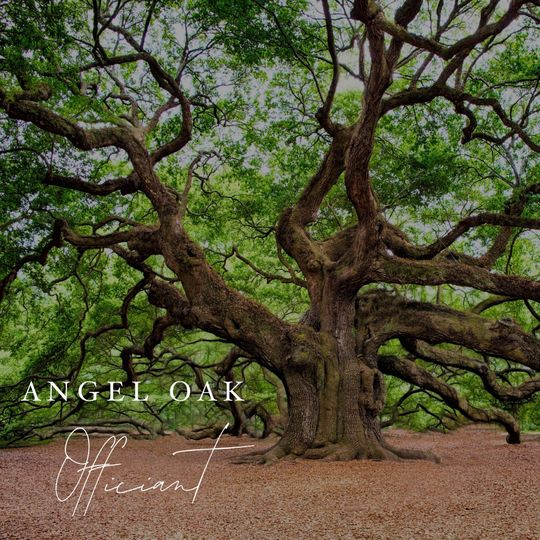 angel oak officiant 51 1865253 1564420646