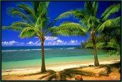 hawaiivkta14tropicallagoonweblg