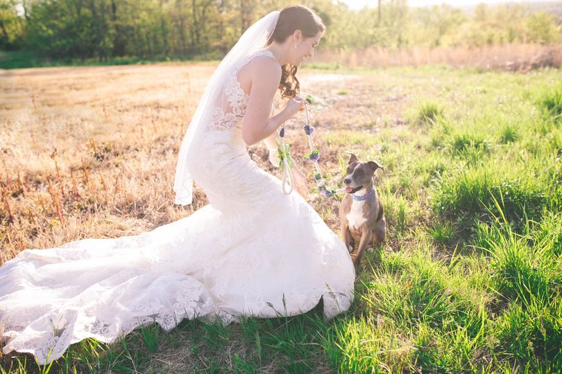 Just a bride and her dog
