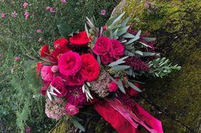 Annie Alexander Flora Designs