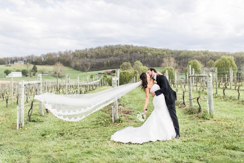 nathan alexandra bluestone vineyard virginia wedding photographer 82 copy 51 908253 1571261904
