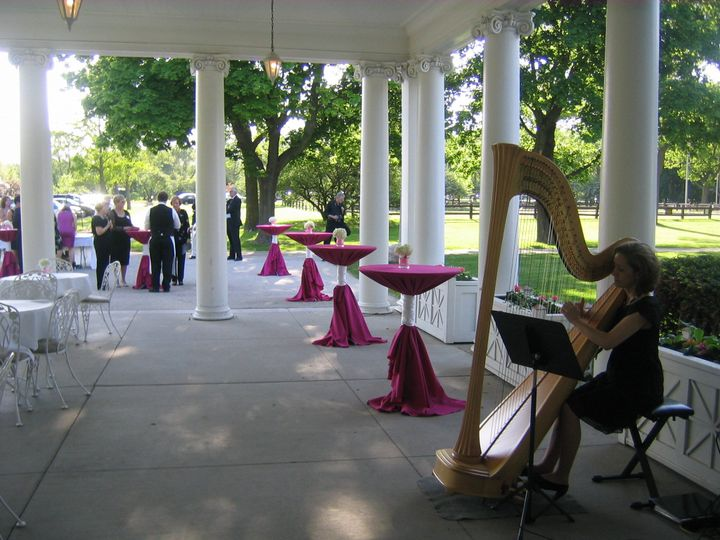 Harp Music By Ann Ceremony Music Milwaukee Wi Weddingwire