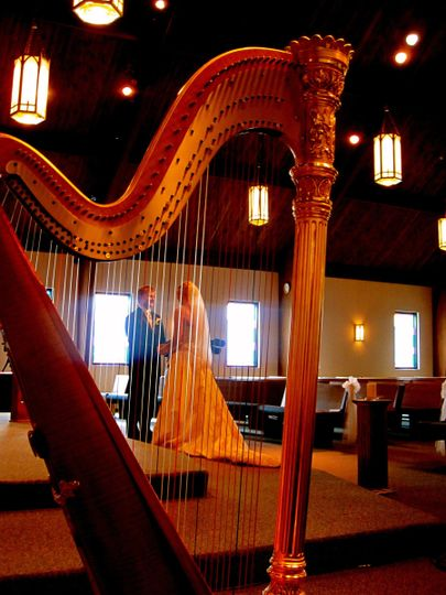 Picture a harp at your wedding!