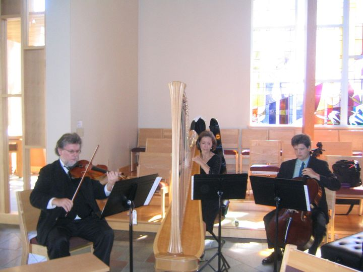A harp, violin, cello adds a wow factor to your wedding.