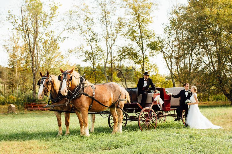 The horse drawn carriage adds such a romantic touch to any day.